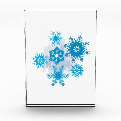Snow Flakes Awards