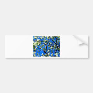 Snow Flowers Bumper Stickers
