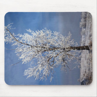 Snow, fog and tree covered with rime ice, Orem, Ut Mouse Pad