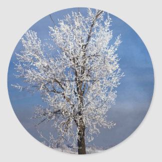 Snow, fog and tree covered with rime ice, Orem, Ut Stickers