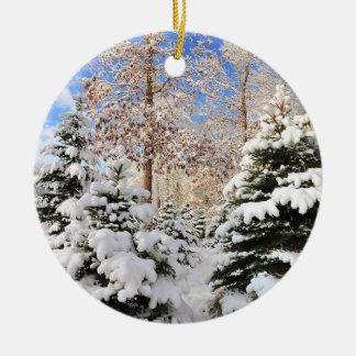 Snow for Christmas Ornament