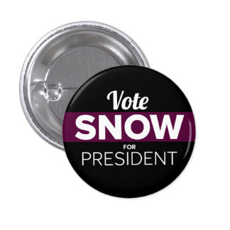 Snow for President Pins