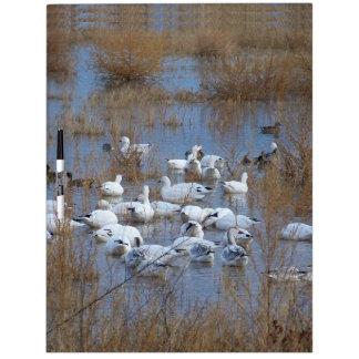 Snow Geese Birds Wildlife Animals Flying Dry-Erase Board