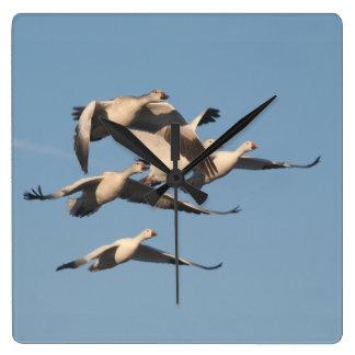 Snow Geese Birds Wildlife Animals Wall Clock