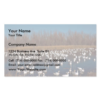 Snow Geese Bosque Del Apache National Wildlife Ref Business Cards