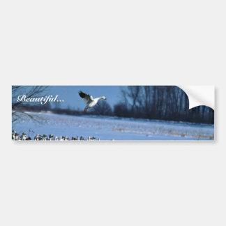 Snow Geese Car Bumper Sticker