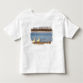 snow geese, Chen caerulescens, pair on a T-shirt