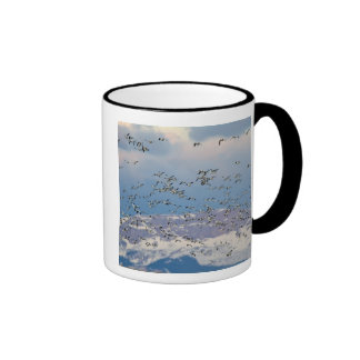 Snow geese during spring migration 2 ringer coffee mug