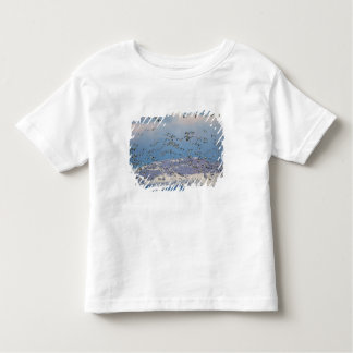 Snow geese during spring migration 2 tee shirt
