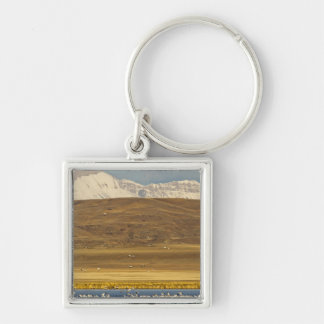 Snow geese during spring migration key chain