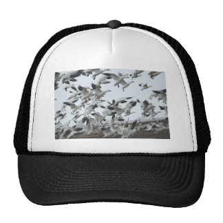 Snow Geese Migration Trucker Hats