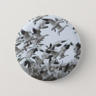 Snow Geese Migration Pinback Button