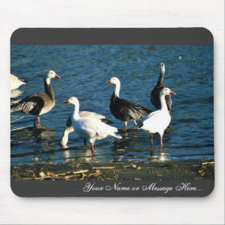 Snow Geese Mouse Pad