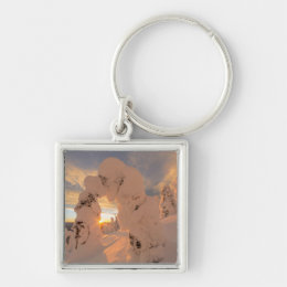 Snow Ghosts In The Whitefish Range Keychain