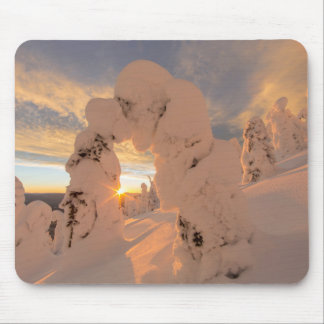 Snow Ghosts In The Whitefish Range Mouse Pad