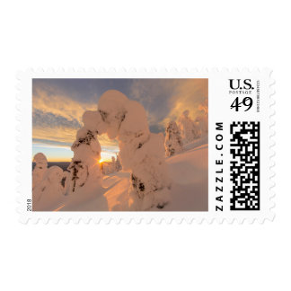 Snow Ghosts In The Whitefish Range Postage