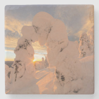 Snow Ghosts In The Whitefish Range Stone Coaster