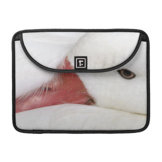 Snow Goose Chen caerulescens), captive in MacBook Pro Sleeve