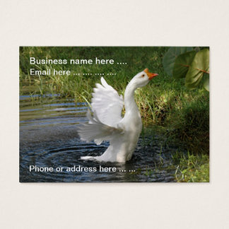 Snow Goose flapping wings Business Cards