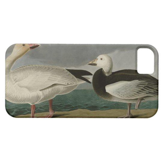 Snow Goose iPhone SE/5/5s Case