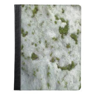 Snow grass iPad case