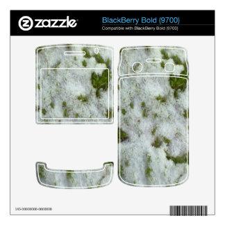 Snow grass BlackBerry skins