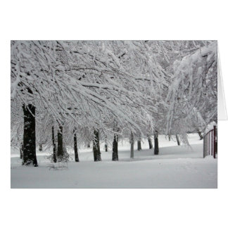 snow greeting cards
