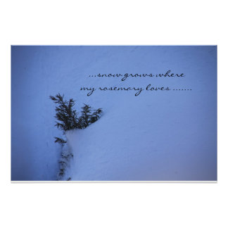Snow Grows where my Rosemary Loves... Poster