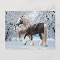 """Snow Gypsies"" Postcard"