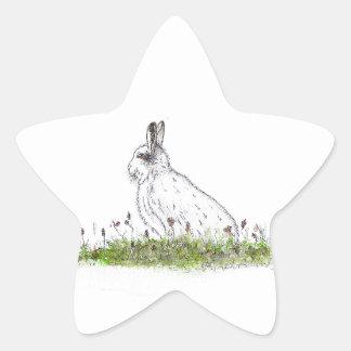 Snow Hare Star Sticker