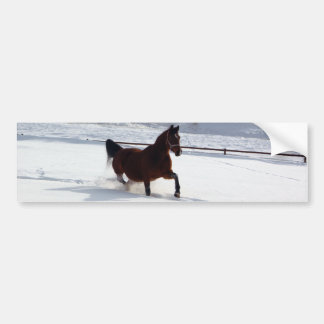 Snow Horse Car Bumper Sticker