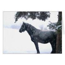 Snow Horse Card
