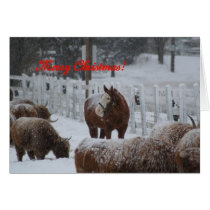 Snow horse, Merry Christmas! Card