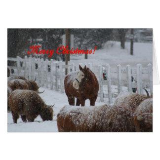 Snow horse, Merry Christmas! Card