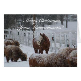 Snow Horse, Merry Christmas from Massachusetts! Card