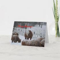 Snow horse, Merry Christmas! Holiday Card