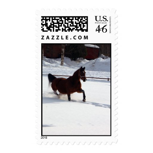 Snow Horse Postage Stamps