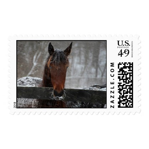 Snow Horse Stamp