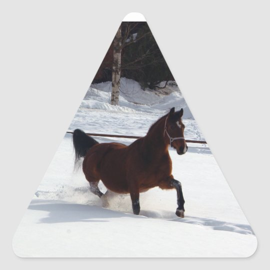Snow Horse Triangle Sticker