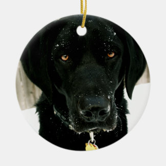 Snow how to Play Nice Black Lab Ornament