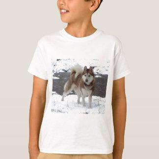 Snow Husky T-Shirt