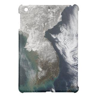 Snow in Korea Case For The iPad Mini
