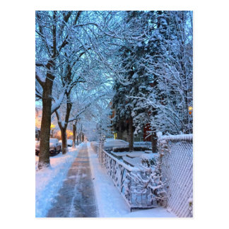 Snow in Montreal Postcard