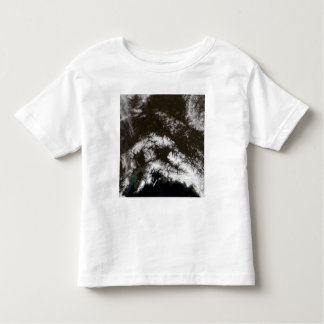 Snow in south central Alaska T-shirt