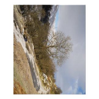 Snow In Swaledale Flyer