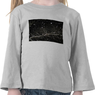 Snow in the Night Tshirts