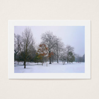 Snow in the Park, Mini Photo Business Card