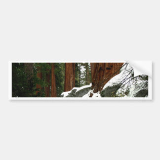 Snow in the Wood Bumper Stickers