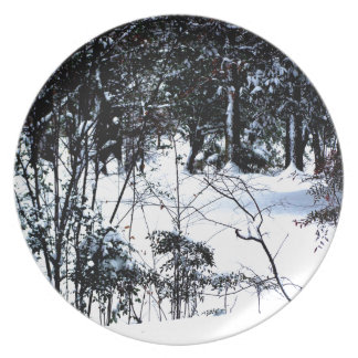Snow In The Woods Plate