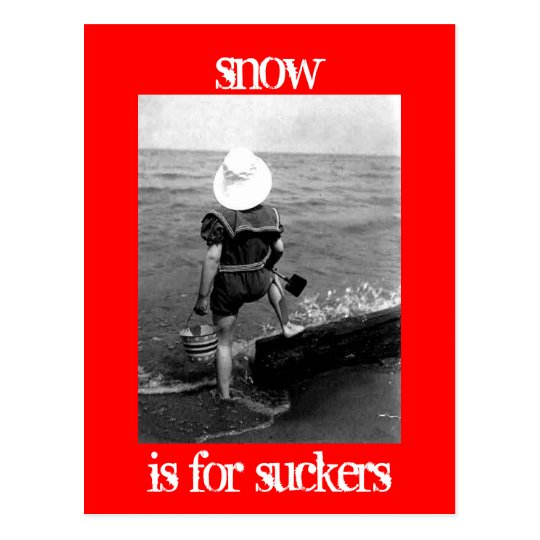 Snow is for suckers postcard